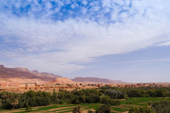 Большой оазис в Tineghir, Марокко стоковые изображения