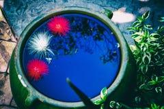 Большой опарник воды Стоковое Изображение RF