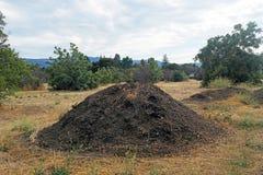 Большой пирог грязи в середине поля Стоковая Фотография RF