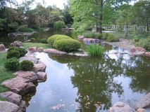 Большой пруд на парке Стоковая Фотография RF