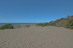 Большой путь в песчанных дюнах на Тихоокеанском побережье около залива Arcata Стоковое Изображение