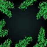 Большой рамки ветвей ели темный Стоковое Фото