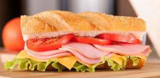 Большой сандвич Стоковые Фото
