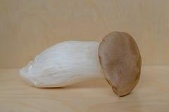 Большой свежий гриб Eringi Стоковые Изображения