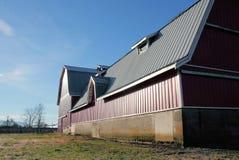 Большой современный амбар с крышей металла Стоковая Фотография