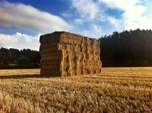 Большой стог сена в Сомерсете Стоковое фото RF