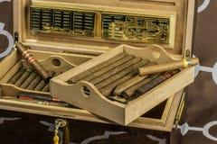 Большой хьюмидор 4 сигары Стоковые Фото