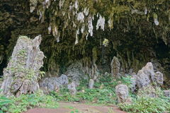 Большой cavern Rurutu Французская Полинезия известняка Стоковые Изображения