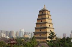 большой pagoda гусыни одичалый Стоковые Изображения RF