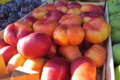 Большой tangerine на рынке Стоковые Изображения