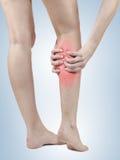 Боль в подколенном сухожилии женщины Стоковая Фотография RF