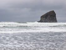 Больдэр в море Стоковое Изображение RF