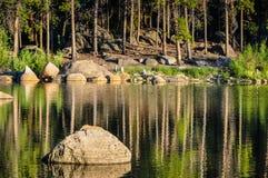 Больдэр в озере Стоковое Фото