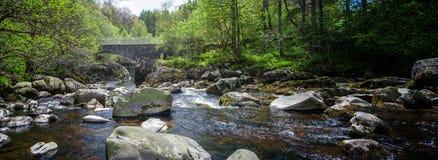 Больдэр заполнил реку Стоковые Фото