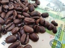 Бразилия мир самый большой производитель кофе на сверх 150 лет стоковые фотографии rf