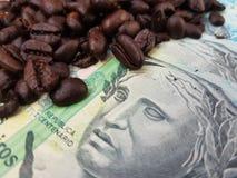 Бразилия мир самый большой производитель кофе на сверх 150 лет стоковое фото rf