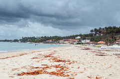 бразильская береговая линия Стоковые Фото