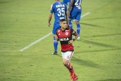 бразильский чемпионат Стоковые Изображения RF