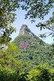 Бразилии de janeiro rio статуя christ jesus Стоковое Изображение