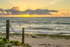 Бразильские пляжи-Pontal делают Coruripe, Alagoas Стоковые Фотографии RF