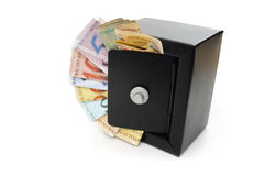 Бразильские сбережения Стоковое Изображение RF