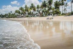 Бразильский Пляж-пляж Carneiros, Pernambuco Стоковые Изображения RF