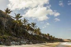 Бразильский пляж стоковая фотография