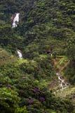 Бразильский тропический ландшафт Стоковые Фотографии RF