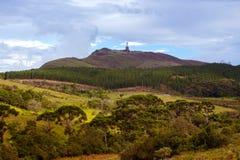 Бразильский тропический ландшафт Стоковое Изображение