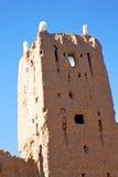 Брайн в Африке Марокко около башни Стоковые Изображения RF