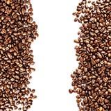 Брайн зажарил в духовке кофейные зерна изолированные на белой предпосылке.  Арабский Стоковое Фото