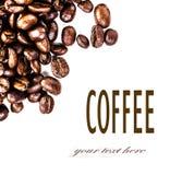 Брайн зажарил в духовке кофейные зерна изолированные на белой предпосылке.  Арабский Стоковые Фото