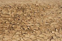 Брайн, засохлость и засушливая земля стоковые изображения