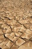 Брайн, засохлость и засушливая земля стоковое изображение rf