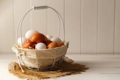 Брайн и белые яичка цыпленка Стоковые Изображения RF