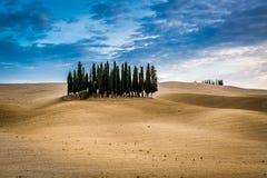 Брайн и голубой ландшафт в осени в Тоскане Стоковое Изображение
