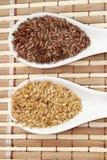 Брайн и золотые семена льна стоковое фото rf
