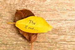 Брайн и упаденные желтым цветом листья осени с надписью КОНЕЦ на деревянной предпосылке Стоковые Фото