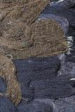Брайн и черные рыболовные сети Стоковая Фотография
