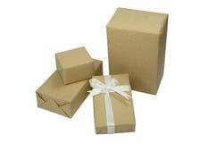 Брайн кладет подарок в коробку Стоковое Изображение RF