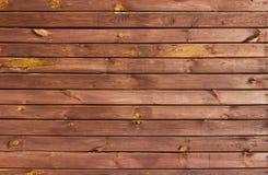 Брайн покрасил деревянную стену Стоковое Изображение