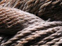 Брайн ropes конец-вверх Стоковые Изображения RF