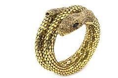 Браслет змейки Стоковая Фотография