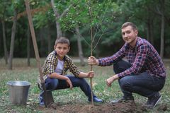 Братья засаживают дерево в саде Работа семьи Засаженное дерево в лесе Стоковое Изображение RF