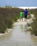 братья пляжа исследуя Стоковое Изображение