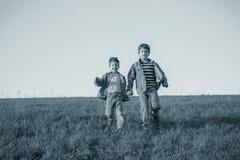 2 брать бежать совместно на зеленом луге против неба, v Стоковое Фото