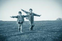 2 брать бежать совместно на луге, тонизированном sepia Стоковые Изображения RF