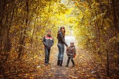 2 брать в парке осени Стоковая Фотография RF