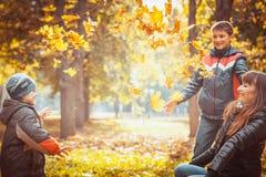 2 брать в парке осени Стоковые Фото