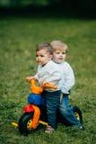 2 брать едут велосипед на траве Стоковое Фото
